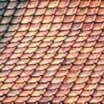 daken schoonmaken van mossen en algen